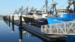 Bellingham Marine supplied the concrete docks for Cresent City's rebuild