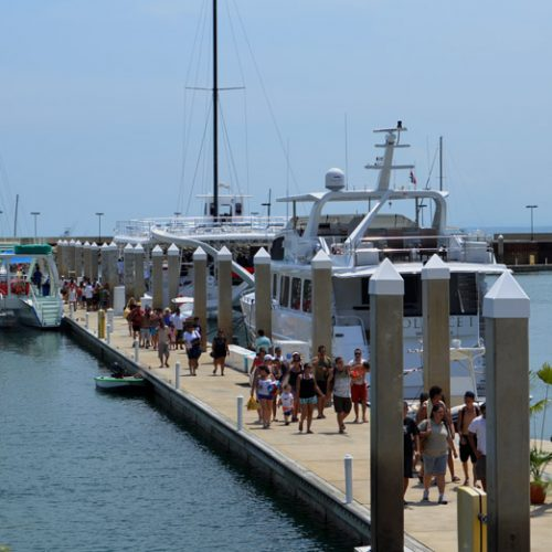 Docks at this superyacht marina are easily accessible by golf carts, allowing for safe loading of passengers and equipment.