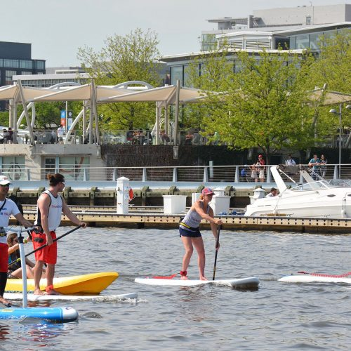 Paddleboards cruise past The Yards Marina in D.C.